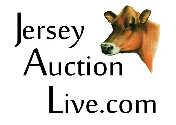 Jersey Auction Live