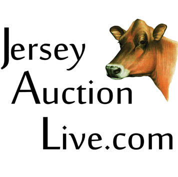 JerseyAuctionLive.com is a LIVE broadcast and bidding service offered by Jersey Marketing Service. Bid LIVE on the consignments in the 64th All American Sale and the 59th Pot O'Gold Sale