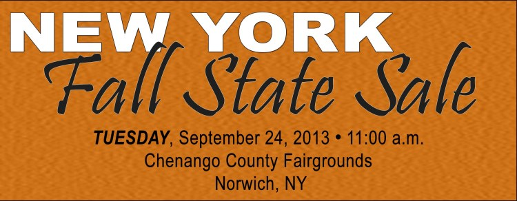 NY Fall Sale Banner