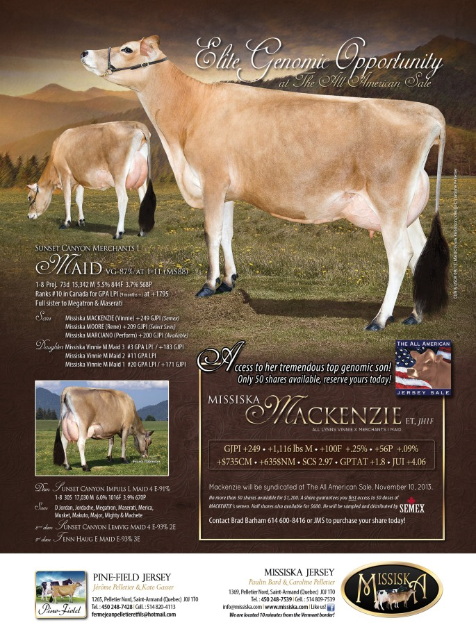 "MISSISKA MACKENZIE has bull shares available on Jersey Bid. You can buy yours here, or by contacting your AJCA area representative. ""Mackenzie"" shares are going fast!"