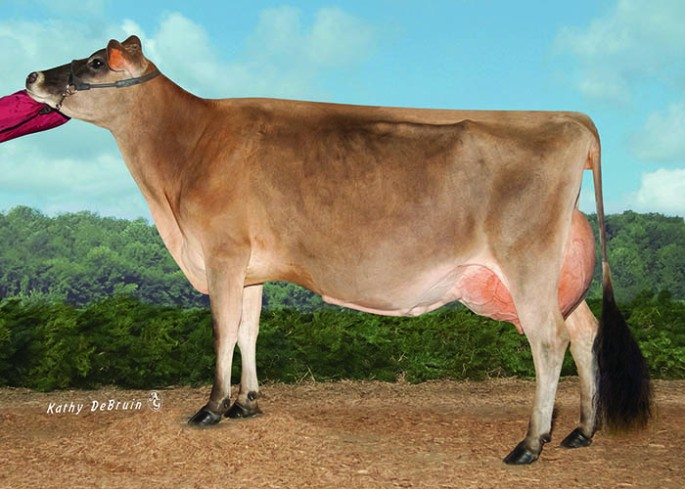 AHLEM ACTION WINSOME 33421, E-91% Dam of PTJ Samson Whisper - Selling as Lot 3