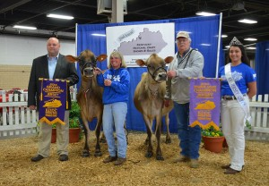 GRAND CHAMPION GRAND - Lot 58 - Senn-Sational Iatola Abigail, Backwoods Jerseys, KY RESERVE GRAND - Lot 56 - Millers Justice Fran, Dick Miller Family, IN