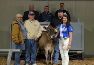THIRD HIGH SELLER (TIE) Lot 29: Freemans Critic Stormy-P-ET brought $5,100 and was consigned by David and Diana Freeman, IL (front left). Buyer of this polled heifer was David Kulp Jr., PA. Kentucky Jersey Queen Rachel Hinton is at the halter, with sale staff Jason Robinson, Herby Lutz, Chris Lundgren and Lynn Lee.
