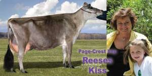Reeses-Kiss