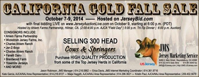 CA Gold Fall