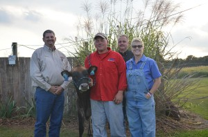 LOT 282 - BLUEROCK TH SUREFIRE VICTORIA was the top selling lot of the day. This September, 2013 calf was consigned by John & Amon Grantham, WV and was purchased for $4000 by Sam, Angela and George Colpetzer, PA