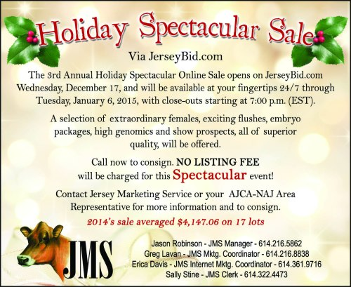 Holiday Spectacular Sale