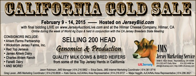 The CA Gold Sale will put consignments on JerseyBid.com for bidding Feb. 9 - 14. All lots with bids will move into the LIVE closeout of the sale, on JerseyAuctionLive.com and at Hilmar Cheese Company, Hilmar, Calif., 3:00 p.m. (PST)