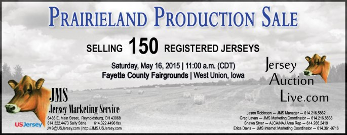 With a focus on Mid-West Jersey genetics, we are looking for great type and production for the Prairieland Production Sale!