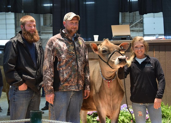 The 2014 All American Senior Calf was sold for $6000 to Don Turner, KY and was consigned by Jake, Josh and Lucas Hershberger, OH