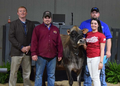 The second top selling lot of the Kentucky National Show and Sale was Lot 25.