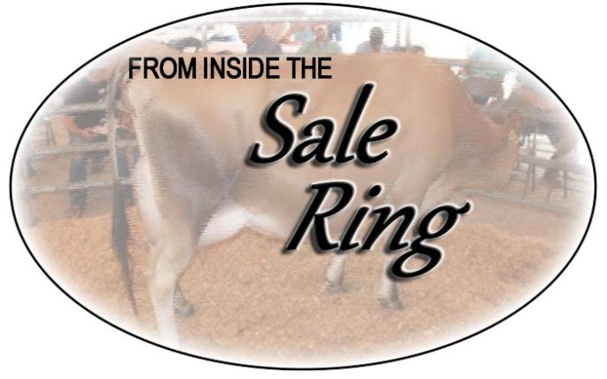 Sale Ring Logo