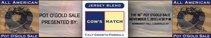 Cows Match Banner