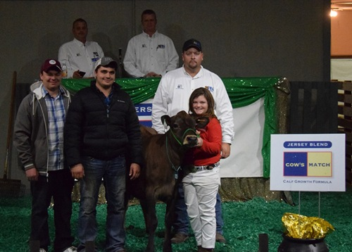 """Lot 105, River Valley Mgapwr Koretta 1233-ET was tied for top selling lot of the Pot O'Gold Sale. Jillian Swafford, GA purchased """"Koretta"""" from River Valley Farm, IL for $7,500."""