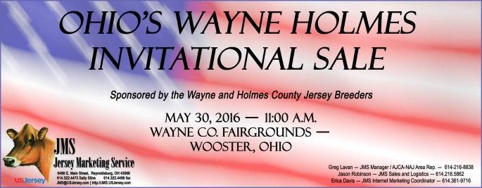 Wayne Holmes OH Sale
