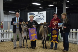 JUNIOR CHAMPION (right) - Lot 14, Winterplace Lookout Glass and RESERVE JUNIOR CHAMPION (left) - Lot 17 DKG Gunman Gail