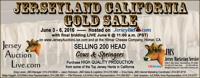 A spring Jerseyland California Gold sale has been scheduled, offering larger groups of springers and cows! Starting on JerseyBid.com, the sale will move to a live format on June 6.