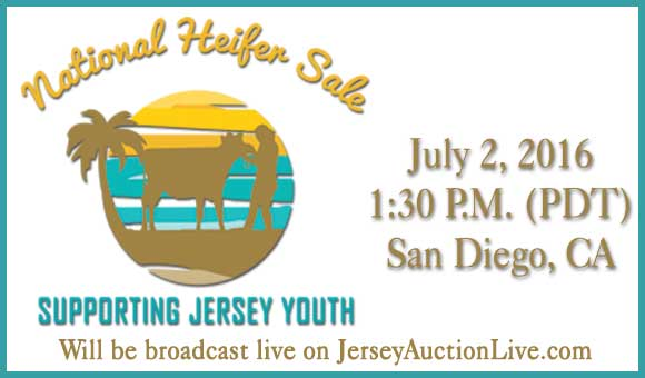 CLICK HERE for the National Heifer Sale Consignment video album