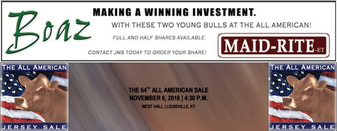 Two Bulls being syndicated in the All American Jersey Sale on November 6, 2016. Click on banner for AA Catalog featuring MAID-RITE and BOAZ