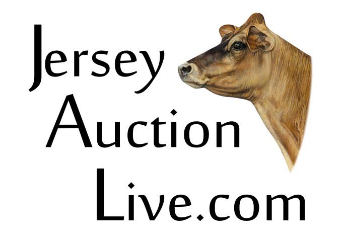 Jersey Auction Live-2019
